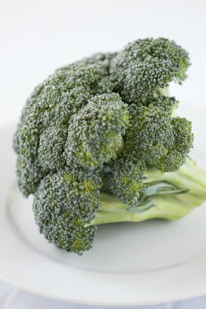 head of raw broccoli on white plate